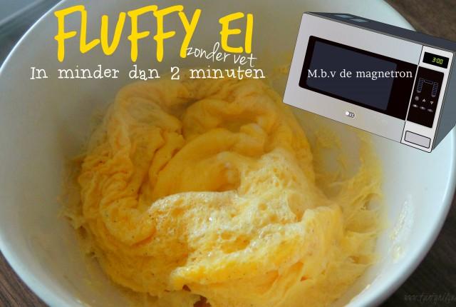 fluffy_ei_magnetron_nl