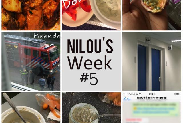 collage_week5