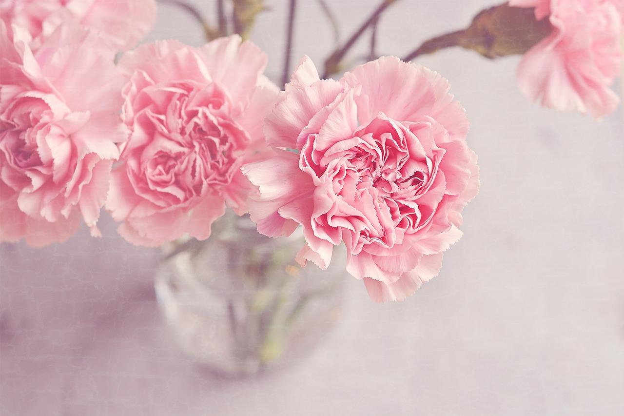 flowers-1313827_1280